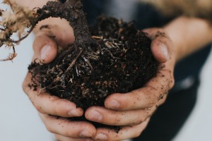 dirt and soil image