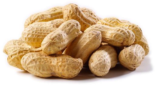 Peanut allergies image